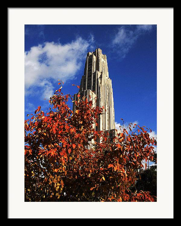 University Of Pittsburgh Framed Print featuring the photograph Pittsburgh Autumn Leaves At The Cathedral Of Learning by Will Babin