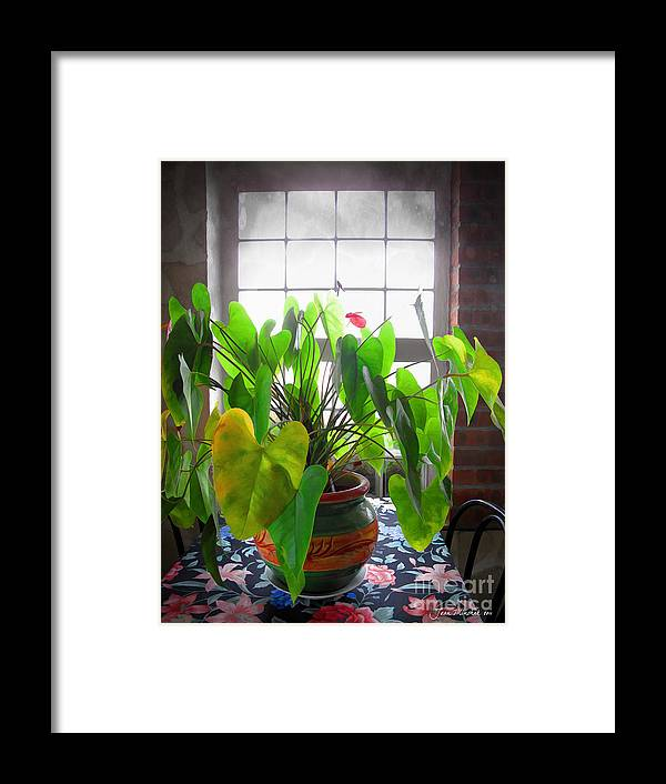 Planter Framed Print featuring the photograph Planter In France by Joan Minchak