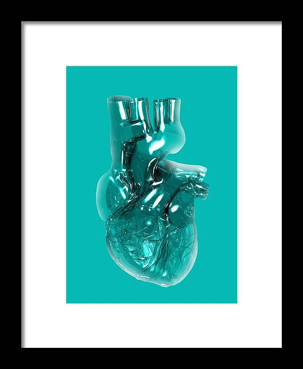 Anatomy Framed Print featuring the photograph Plastic Artificial Heart, Artwork by Victor Habbick Visions