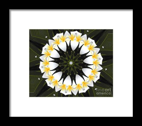 Plumeria Framed Print featuring the photograph Plumeria 1 by Mark Gilman