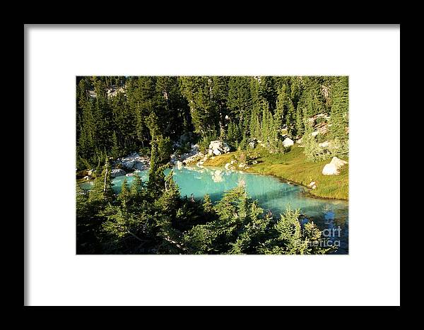 Lassen Volcanic National Park Framed Print featuring the photograph Pool In The Forest by Adam Jewell
