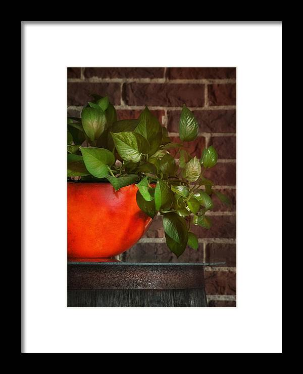Ivy Framed Print featuring the photograph Pot Of Greens by Brenda Bryant