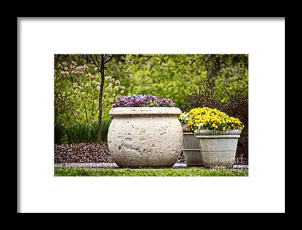 Flowers Framed Print featuring the photograph Pots Of Pansies by Cheryl Davis