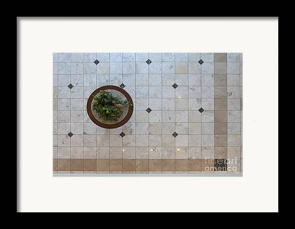 Architecture Framed Print featuring the photograph Potted Plant In Foyer Floor From Above by Will & Deni McIntyre