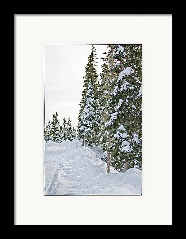 Mountain Framed Print featuring the photograph Powdery Snow Path by Lisa Spencer