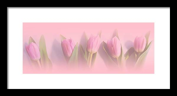 Pink Framed Print featuring the digital art Pretty In Pink by Sharon Lisa Clarke