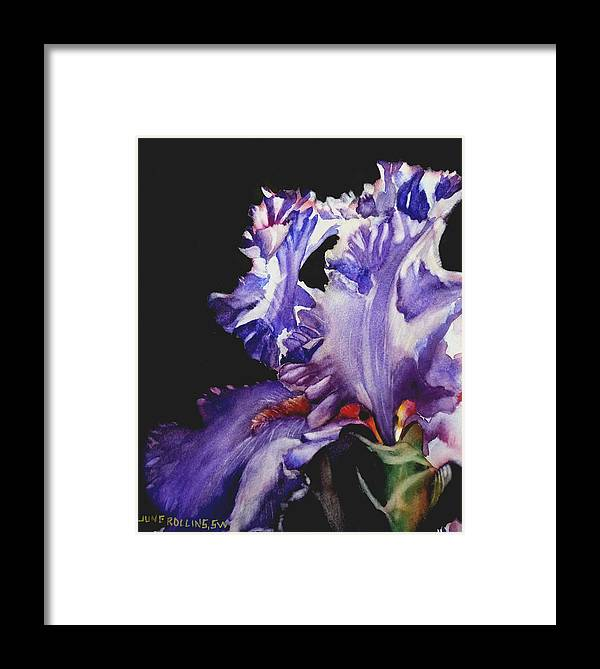 Watercolor Framed Print featuring the painting Pretty In Purple by June Rollins