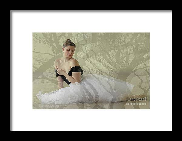 Ballet Framed Print featuring the digital art Prima Ballerina by Denise Wilkins
