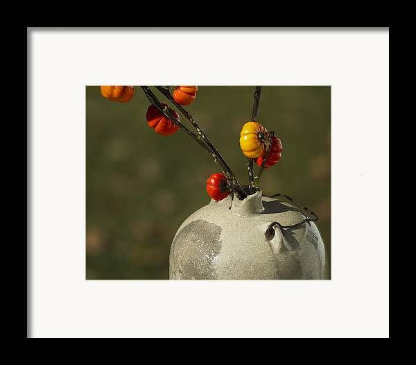 Solanum Integrifolium Framed Print featuring the photograph Pumpkin On A Stick In An Old Primitive Moonshine Jug by Kathy Clark
