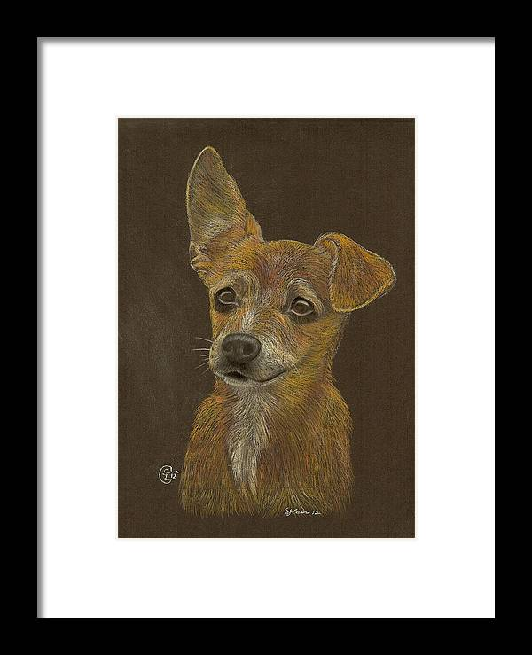 Dog Framed Print featuring the pastel Pup by Stephanie L Carr