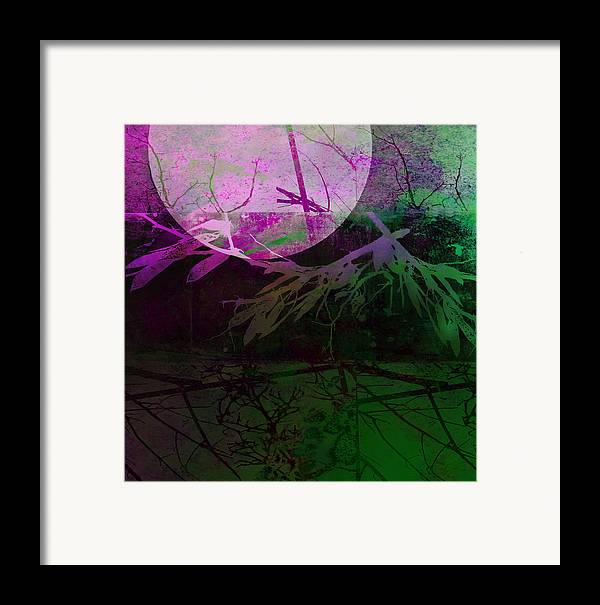 Moon Framed Print featuring the photograph Purple Moon by Ann Powell