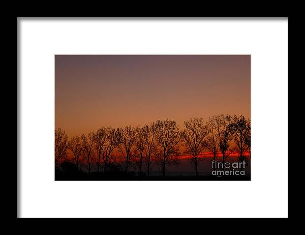 Morning Framed Print featuring the photograph Purple Morning by Amalia Suruceanu