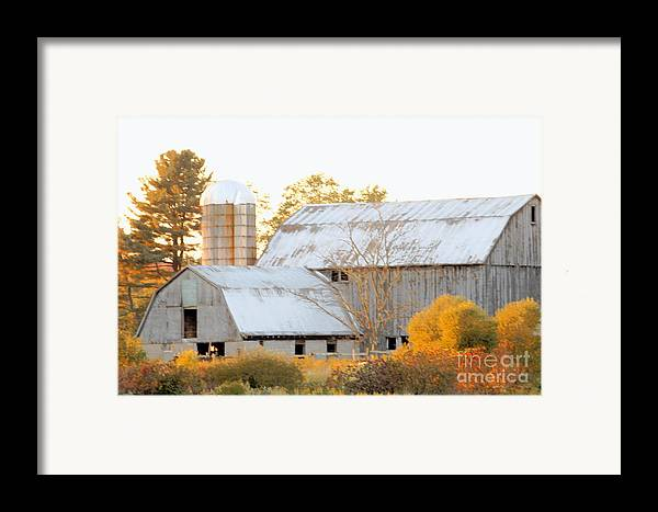 Barn Framed Print featuring the photograph Quiet Country by Joe Jake Pratt
