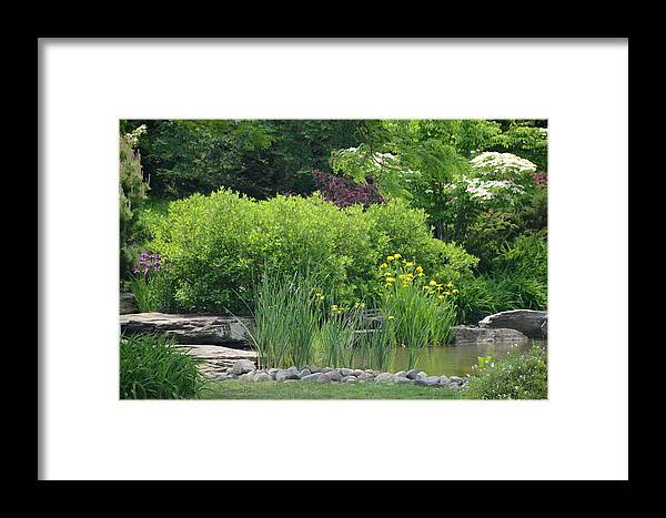 Landscape Framed Print featuring the photograph Quiet Pond by Michael Carrothers
