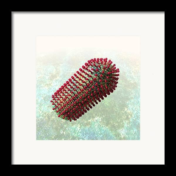 Biological Framed Print featuring the digital art Rabies Virus 2 by Russell Kightley