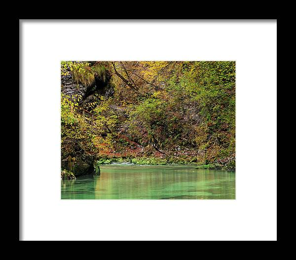 River Framed Print featuring the photograph Radovna River In Vintgar Gorge Slovenia by Greg Matchick