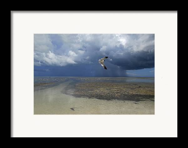 Color Image Framed Print featuring the photograph Rain Falls From A Huge Cloud by Raul Touzon