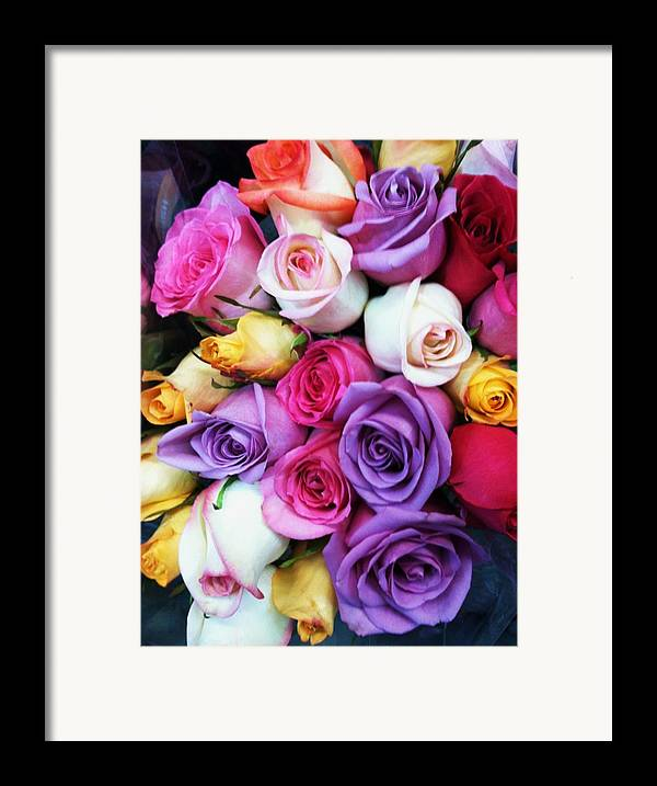 Roses Framed Print featuring the photograph Rainbow Rose Bouquet by Anna Villarreal Garbis