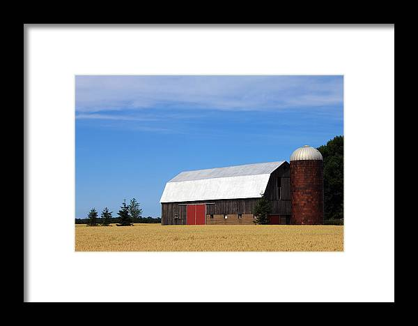 Barn Framed Print featuring the photograph Red Door by Sheryl Burns