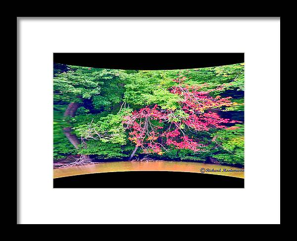 Nature Framed Print featuring the photograph Red Leaves Pano by Richard Montemurro