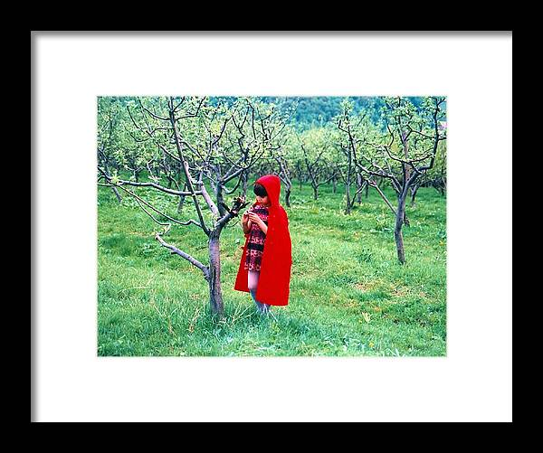 Photography Framed Print featuring the photograph Red Riding Hood by ITI Ion Vincent Danu