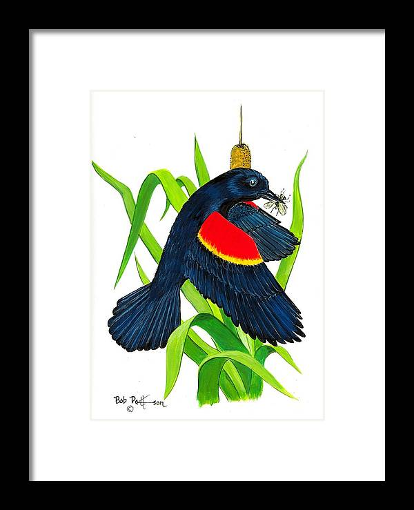 Wildlife Framed Print featuring the painting Red Wing Blackbird Dinner by Bob Patterson