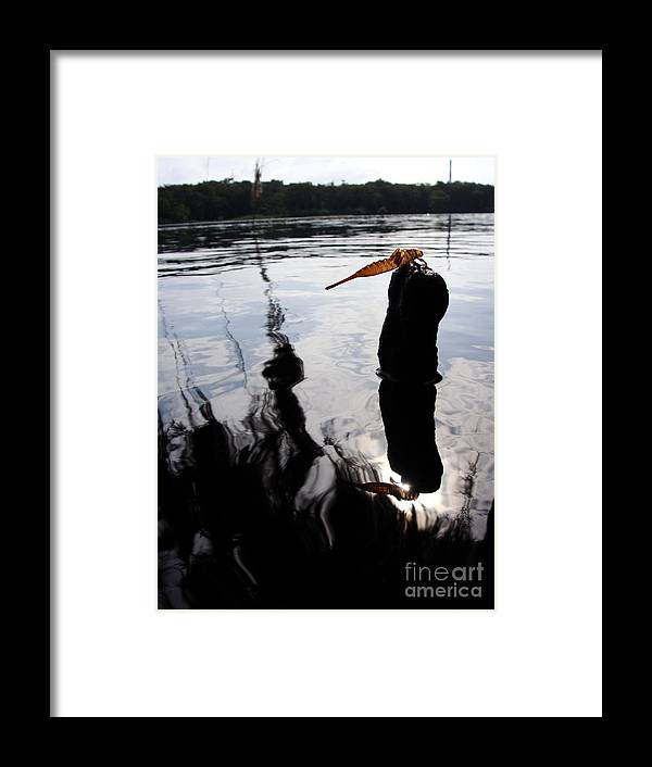 Larva Framed Print featuring the photograph Reflection Of The Past by Jack Norton