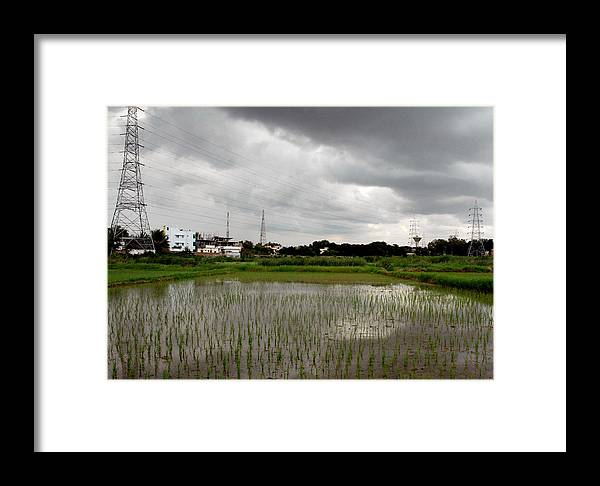 Dark Clouds Paddy Water Poles Trees Houses White Brown Framed Print featuring the photograph Reflections In Water 1 by Johnson Moya