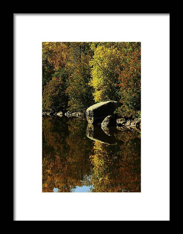 Framed Print featuring the photograph Reflections by Joi Electa