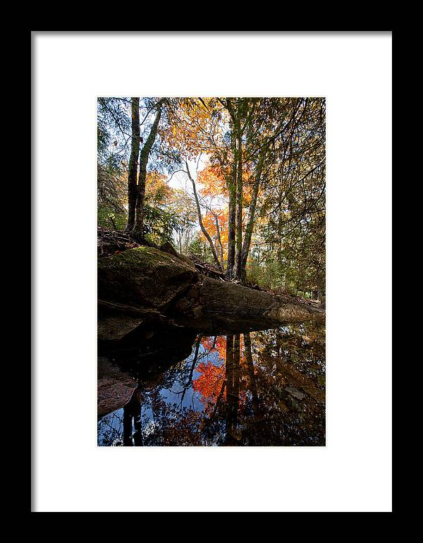 Acadia National Park Framed Print featuring the photograph Reflections On Acadia by Scott Bryson