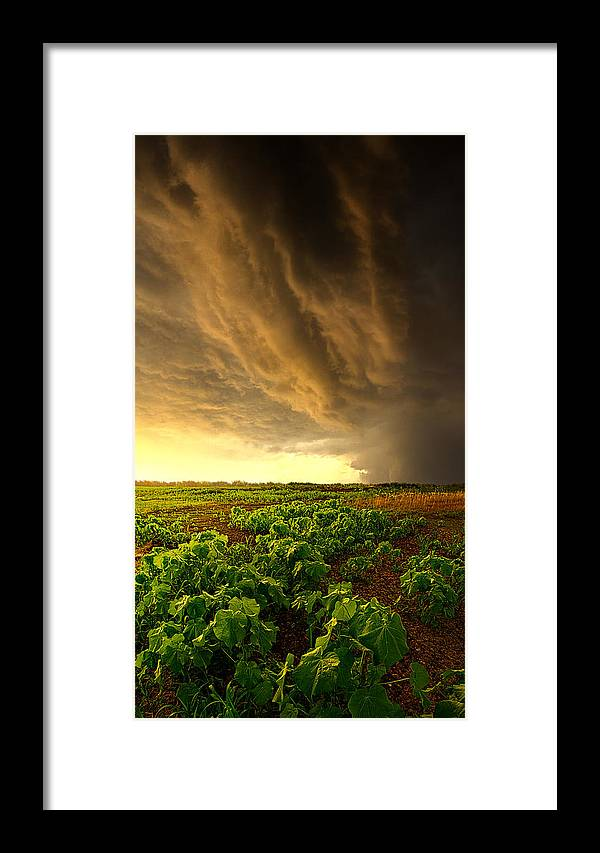 Horizons Framed Print featuring the photograph Relief by Phil Koch