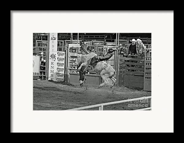 Bull Riding Framed Print featuring the photograph Ride 'em Cowboy by Shawn Naranjo