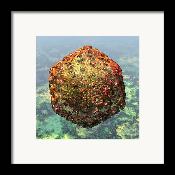 Africa Framed Print featuring the digital art Rift Valley Fever Virus 1 by Russell Kightley