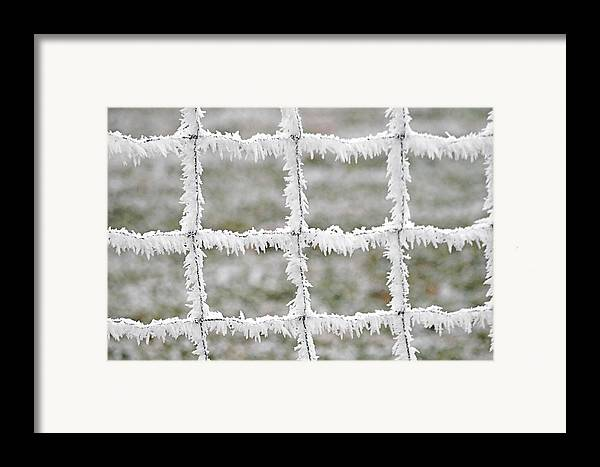 Frost Framed Print featuring the photograph Rime Covered Fence by Christine Till