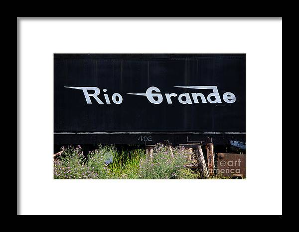 Photograph Framed Print featuring the photograph Rio Grande by Vicki Pelham