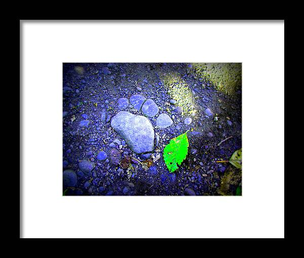 Rocks Framed Print featuring the photograph Rock Paw by Lisa Rose Musselwhite