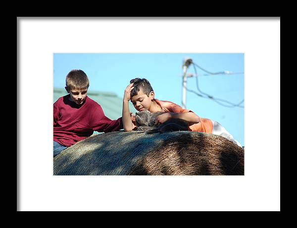 Framed Print featuring the photograph Role In The Hay by Katrina Johns