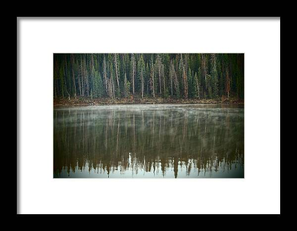 Fog Framed Print featuring the photograph Rolling Fog by Joyce Specht