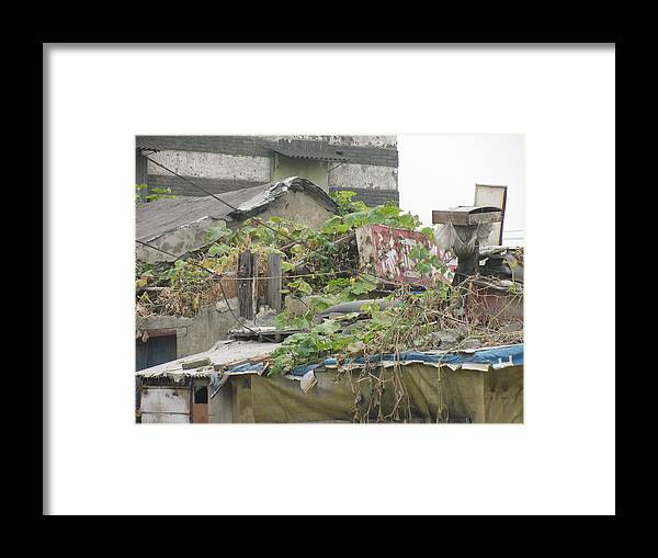 Garden Framed Print featuring the photograph Roof Top Garden by Alfred Ng