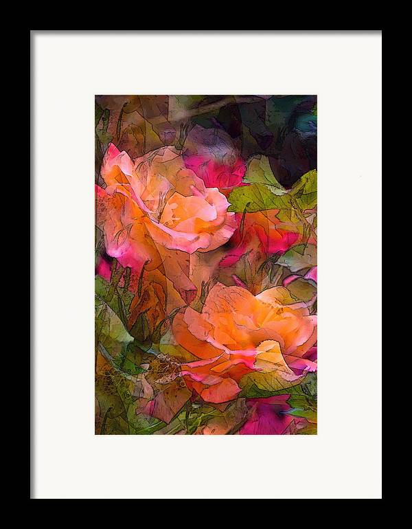 Floral Framed Print featuring the photograph Rose 146 by Pamela Cooper