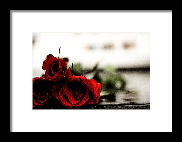 Rose Framed Print featuring the photograph Roses by Gerald Cheong