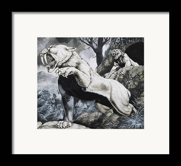 Big Cat; Wild; Cats; Sabre-tooth; Sabretoothed; Sabretooth; Extinct; Sabre Tooth; Toothed; Fierce; Teeth; Fangs Framed Print featuring the painting Sabre-toothed Tigers by Richard Hook