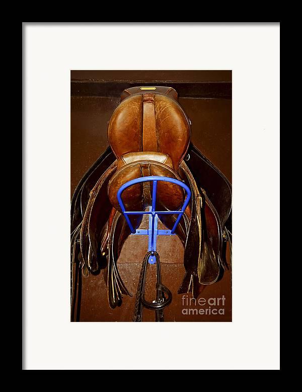 Saddle Framed Print featuring the photograph Saddles by Elena Elisseeva