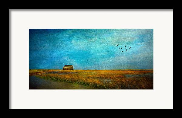 Sea Framed Print featuring the mixed media Salt Marsh by Michael Petrizzo