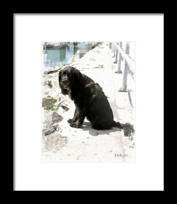 Dog Framed Print featuring the painting Salty Dog by Brian D Meredith