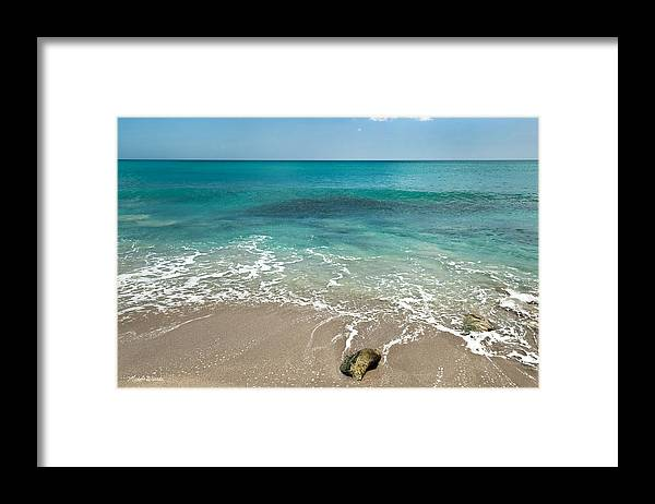 Ocean Framed Print featuring the photograph School At Blowing Rocks by Michelle Constantine