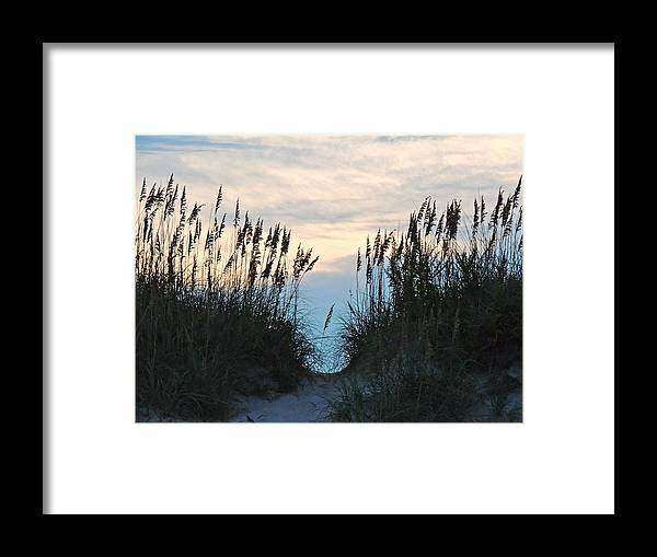 Sea Oats Framed Print featuring the photograph Sea Oats At Sunset by Eve Spring