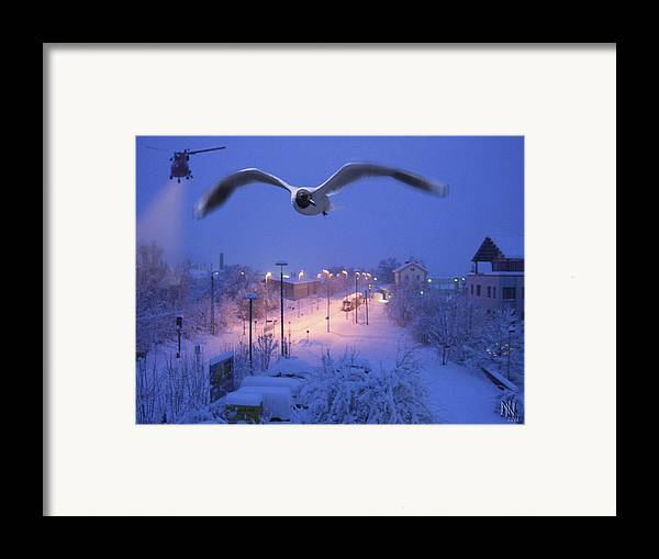 Seagull Framed Print featuring the digital art Seagull At Winter by Nafets Nuarb