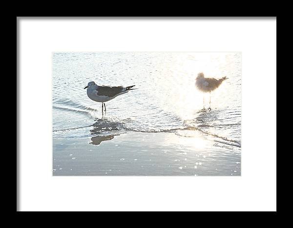 Seagulls Framed Print featuring the mixed media Seagulls In A Shimmer by Olivia Novak