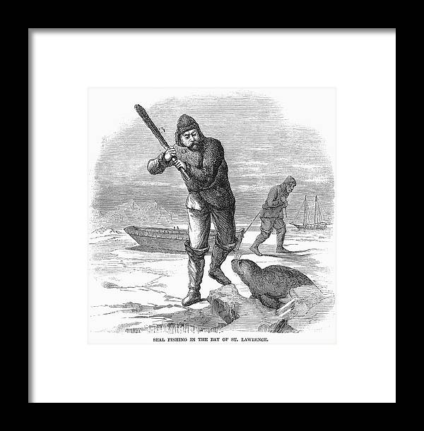 1867 Framed Print featuring the photograph Seal Hunting, 1867 by Granger